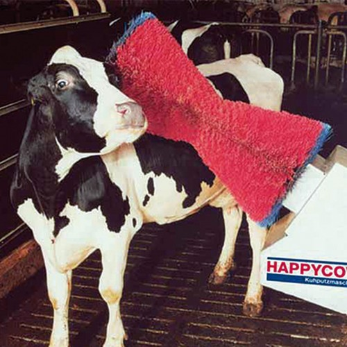 Spazzola HAPPY COW completa