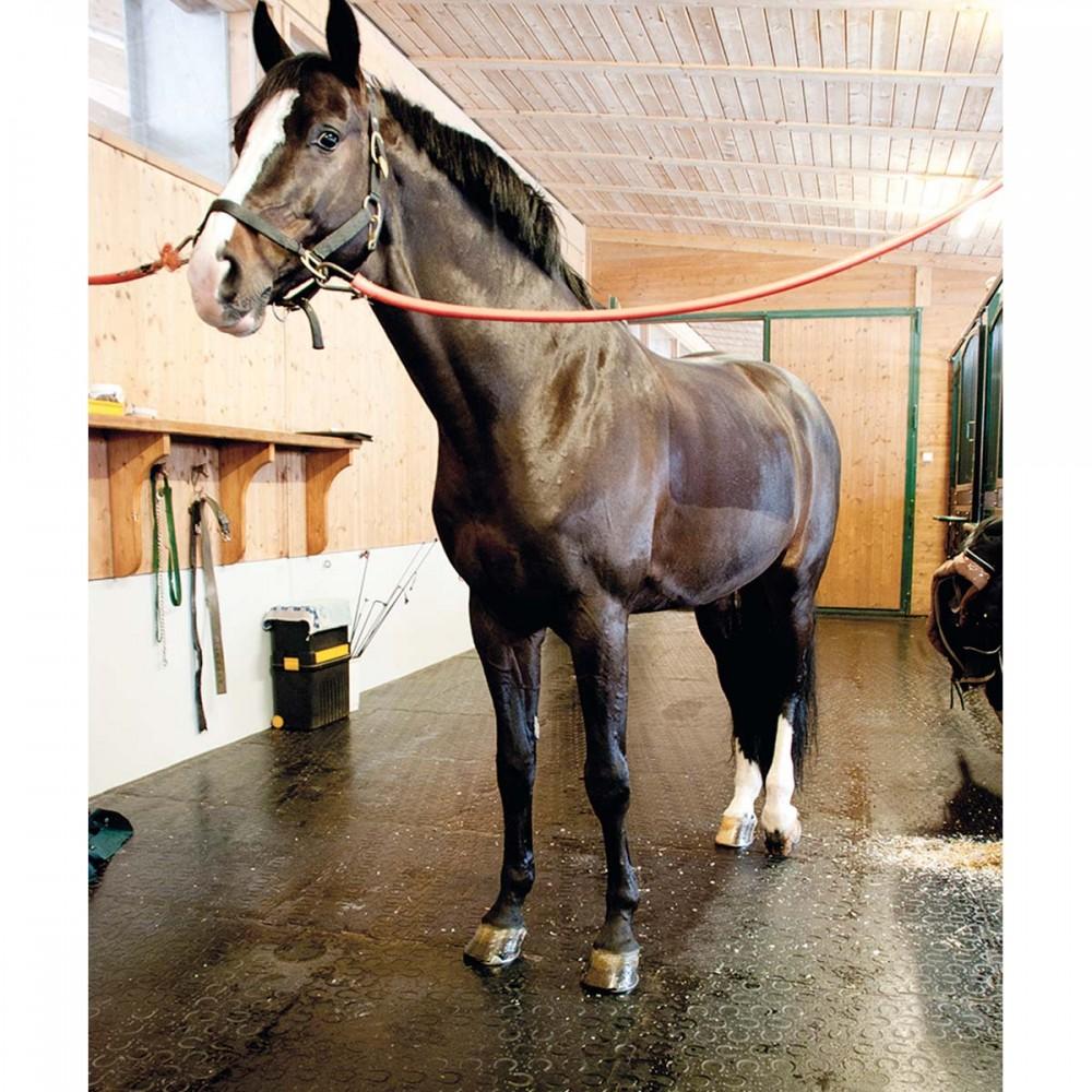Il tappeto in gomma per cavalli classic per box e corridoi for Box per cavalli usati in vendita