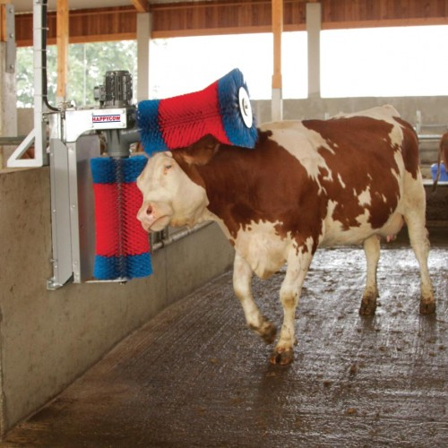 560 18820_a Spazzola HAPPY COW DUO